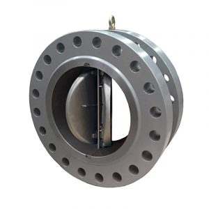 Double Plate Wafer Flanged Check Valve