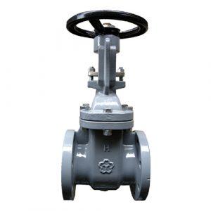 Rising stem normal temperature cast iron globe valve-1